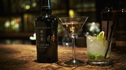 Kyoto Gin Cocktails