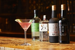Monthly Bar Promotion: Gin